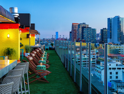 Artist N. Carlos J's work featured at Savanna Rooftop in Long Island City's Z Hotel.