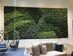 GSky surpasses 500 Versa Wall indoor living walls.