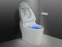 A bowl-cleansing pre-mist is activated whenever the seat is occupied, and an automated flush allows a sanitary touch-free experience. A deodorizer and in-bowl LED nightlight are extra touches.