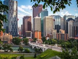 the Calgary, Canada skyline through the trees