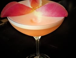 Rose Ginvino cocktail