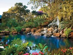 The lush surroundings at Four Seasons Resort Lanai reflect the extraordinary natural beauty of this tiny Hawaiian isle.