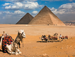 Giza Pyramids and Cairo Egypt
