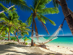 Empty hammock in the shade of palm trees on tropical Fiji Islands