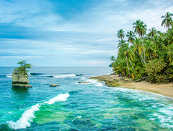 Wild caribbean beach of Costa Rica - Manzanillo