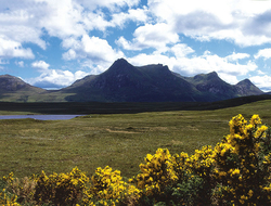 Ben Loyal Scotland