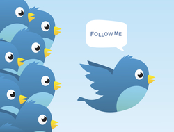 "Illustration of blue Twitter bird saying ""follow me"" with a bunch of other Twitter birds behind it"