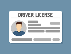 Driver's license graphic