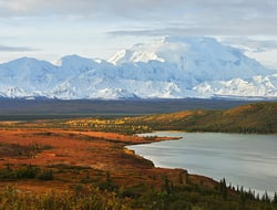 Denali and Wonder Lake - kongxinzhu/iStock/Getty Images Plus/Getty Images