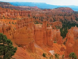 Domestic sites such as Red Rocks in Bryce Canyon National Park, Utah, can provide a romantic domestic alternative to Caribbean beach honeymoons.