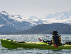 Image of kayaker looking over at mountain range