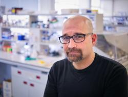 University of Leicester professor Flaviano Giorgini in his lab
