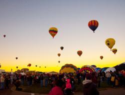 hot air balloons taking off at dawn
