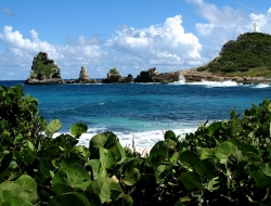 Bay in Pointe a Pitre Guadeloupe