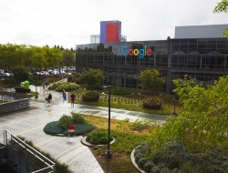 Google office (Google)