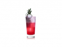 Festive holiday cocktail topped with sparkling cranberry juice.