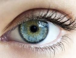 A close image of a blue eye