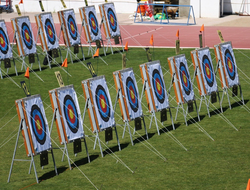 archery targets lined up