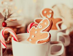 Holiday Hot Chocolate