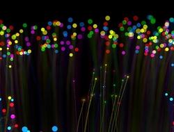 fiber (pixabay)
