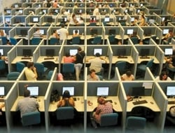 Employees at a call center