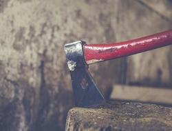 ax in a tree stump