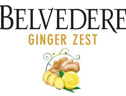 Belvedere Vodka Ginger Zest label illustration
