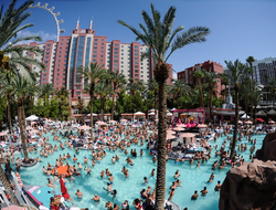 Pool party at Flamingo GO Pool in Las Vegas