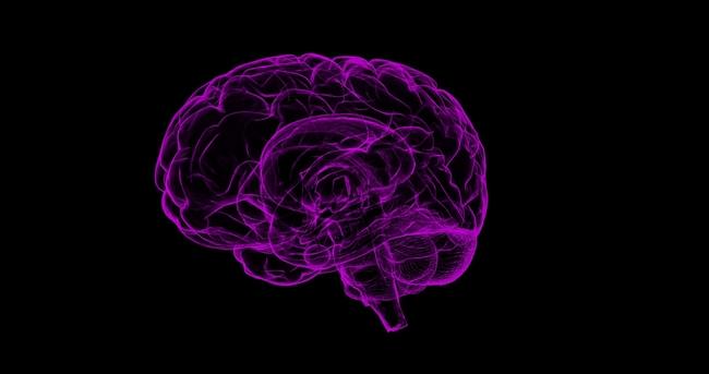 purple brain
