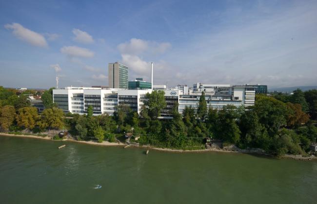 Roche, Basel