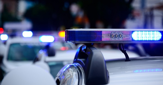 police car (Pixabay)