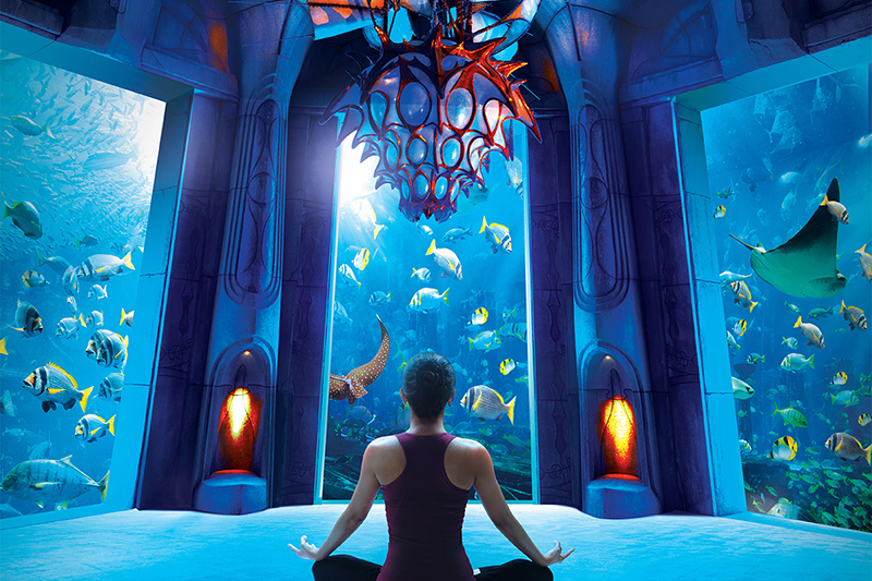 Atlantis The Palm Unveils Aquaman Movie Inspired Package Travel Agent Central